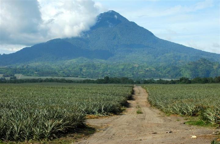 Philippines, Mindanao, South Cotabato, Polomolok, Mt. Matutum