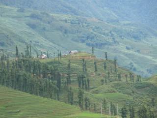 Sapa Valley view