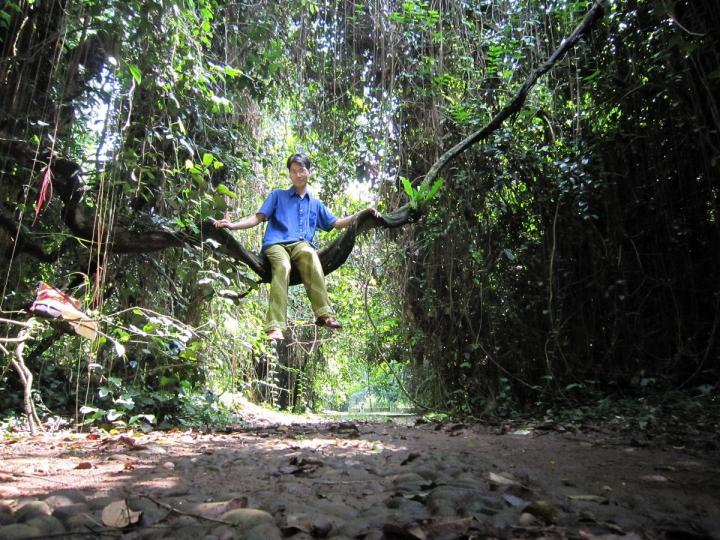 Me sitting on Bauhinia sp. in Kebun Raya Bogor