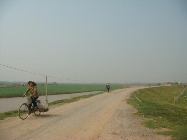Countryside on the dike road from Hanoi to Dong Ho village.