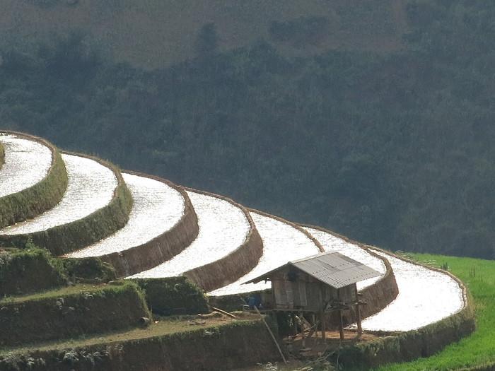 landscape in Mu Cang Chai - Vietnam