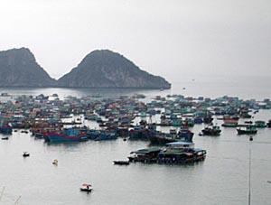 Cat Ba - view of the main commercial harbor of Cat Ba Island