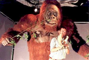 Professor Stringer (Natural History Museum, UK) with a model of the jawbone of a Gigantopithicus, huge apes now extinct, believed to be the most relevant evidence of the existence of the Yeti.