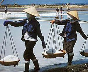 Women laborers at the saltworks around Cam Ranh Bay.