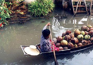 A vendor carries coconuts on the way to a nearby floating market.