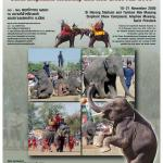 Elephant poster from the Tourism Authority of Thailand.
