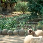 Cannonball garden, at the old Portuguese Fort. Diu Island, Gujarat, India.