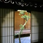 Tea ceremony room at Koto-in, a subtemple garden at Daitokuji.