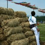The Sagami Kite Festival, held during Golden Week in May each year features some of the largest kites in Japan, some weighing over a ton.