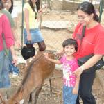 My daughter Kancana Preetika at the petting zoo