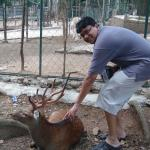 My husband Kathir at the petting zoo