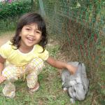 My daughter Kancana Preetika playing with the rabbit