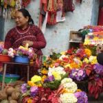 Flower seller, Pashupatinath Temple  Kathmandu