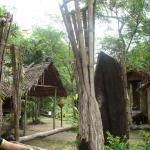 Huts in Monsopiad Cultural Village