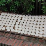 Rice cakes drying on the street in Laos.