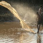 Net Fishing on the Tonle Sap