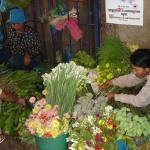 A flower stall provides a burst of colour and scent. Russian market, Phnom Penh, Cambodia.
