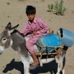 Donkey driver kid, Thar desert.