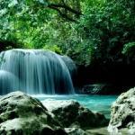 The alluring Kawasan Falls in Badian Cebu
