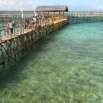 Dolphin Island in Aquamarine Park