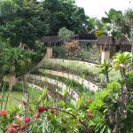 Ubud Botanic Garden