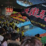 Flag waving by Hanshin Tiger fans.