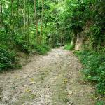 The path to Hagimit Falls, Samal Island, Davao, Mindanao, Philippines