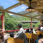Torokko Train at Sagano Arashiyama area