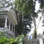 Bogor Botanic Garden