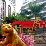 A Year of the Tiger display in Sheung Wan, Hong Kong