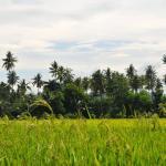 Mindanao, Mores & Myths