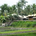Dolores resort