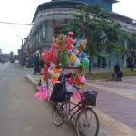 Kampot bird houses