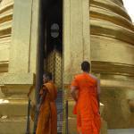 Saffron-robed monks of the Grand Palace, Bangkok