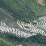 moutains became rice fields