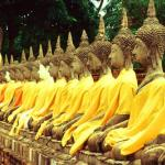Golden Buddha images.