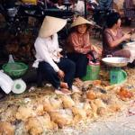 Cholon, Vietnam - chicken alley.
