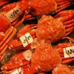 These brilliant crabs are displayed for sale at one of countless thousands of fresh fish markets throughout Japan.