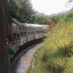 The East Coast Mail train heading through the rainforest jungles at the heart of Peninsular Malaysia.