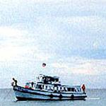 Ko Samet, Thailand: Environmentalists regard the ferries shuttling tourists to Samet and back as threats to the island's marine wildlife.