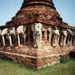 """Elephants have long been revered in the Thai Kingdom. Besides being used as a major form of transportation in the past, the elephant is also considered the """"royal"""" animal. The intricately carved elephant heads among the ruins is an indication of the animal's importance even during the Ayutthaya days."""