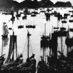 Cat Ba, a big island off Haiphong, has long been an important fishing area. This photo, circa 1950, shows boats of fishing cooperatives in Cat Ba preparing for the high sea.