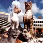 Cat Statue In Kuching Town Center