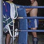 Between rounds, this boxer in blue and his trainer graciously offered their smiles, seconds before the boxer bounded into the ring and gave his opponent a stiff, breathtaking kick to the groin.