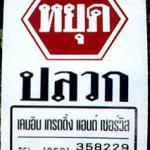 Chiang Mai, Thailand. Ah, the folly of humanity. This sign for a termite exterminator service could well appear above a heap of the pests after one of their awe-inspiring swarms.