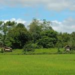 The Maranao Tribe from Lake Lanao | ThingsAsian
